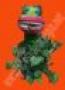 Planta Carnívora Para Ventriloquía