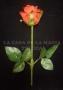 Antorcha A Rosa Automática