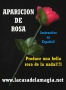 Aparición De Rosa