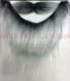 Barba y Bigote-Gris Canoso