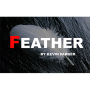 Feather Por:Kevin Parker/DESCARGA DE VIDEO