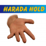Harada Hold Por:Daiki Harahada/DESCARGA DE VIDEO