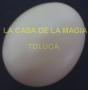 Huevo De Plástico