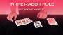 In the Rabbit Hole Por:Creative Artists/DESCARGA DE VIDEO