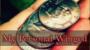 My Personal Winged Por:Dan Alex/DESCARGA DE VIDEO