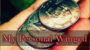My Personal Winged Por:Dan Alex/DESCARGA DE VIDEO