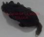 Ratón Mini De Hule-Negro