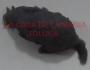 Ratón Mini De Hule-Gris