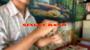 Single Band Por:Kelvin Trinh/DESCARGA DE VIDEO