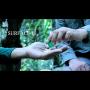 Surface 3 Por:Arnel Renegado/DESCARGA DE VIDEO