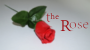 The Rose Por:Sandro Loporcaro/DESCARGA DE VIDEO