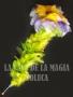 Flor De Plumas que Se Marchita